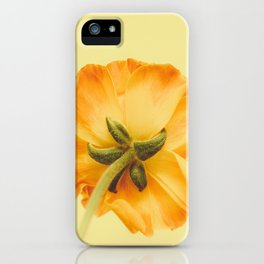 arriere iPhone Case