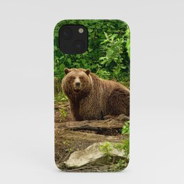 Awe Inspiring Giant Adult Grizzly Bear Observing Photographer In Green Pasture Ultra HD iPhone Case