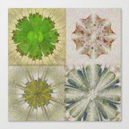 Grasshouse Configuration Flower  ID:16165-050526-69250 Canvas Print