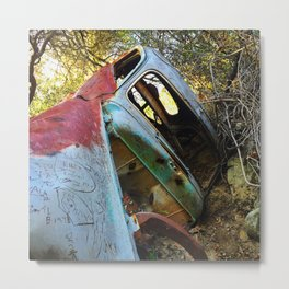 Natural Wreck Metal Print