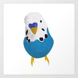 Baby Budgie  Art Print