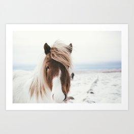 Black And White Horse Print Art