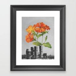 "255 - ""a tree grows in Brooklyn"" Framed Art Print"