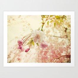 Spring bling Art Print