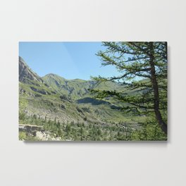 Alpine Valley Fir Trees Landscape Metal Print
