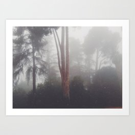 Stand out in the fog Art Print