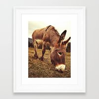 donkey Framed Art Prints featuring Donkey by Vic Torys