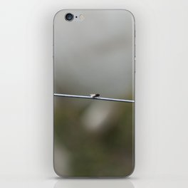 Isolate iPhone Skin