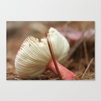 mushroom Canvas Prints featuring Mushroom by The Botanist's Daughter