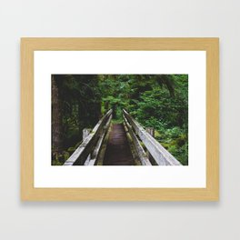 Staircase Trail  Framed Art Print