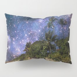 The Ultimate Canvas  Pillow Sham