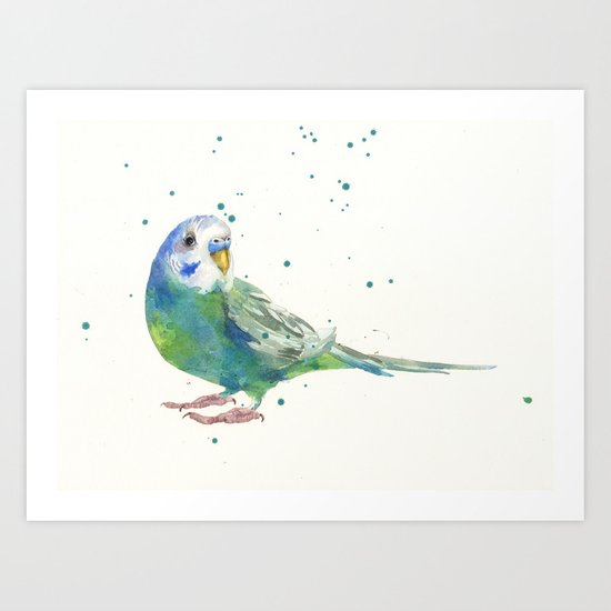 Budgerigar Watercolor Print Art Print
