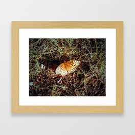 Just A Plain Ole' Butterfly Framed Art Print