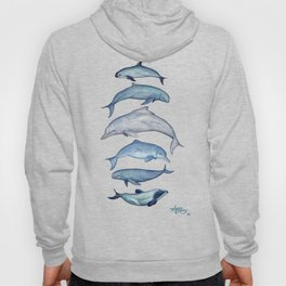 """""""Rare Cetaceans"""" by Amber Marine - Watercolor dolphins and porpoises - (Copyright 2017) Hoody"""