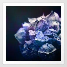 Dream Flower 5 Art Print
