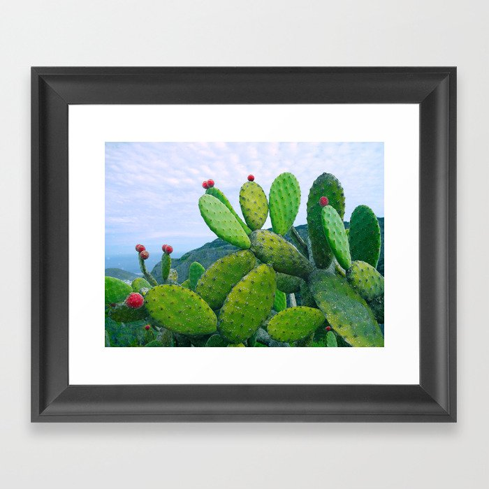 Blooming cacti Framed Art Print