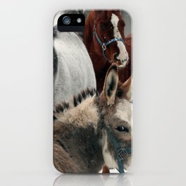 The Secret iPhone Case