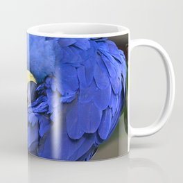 A Hyacinth Macaw Preening Its Feathers Coffee Mug