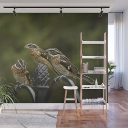 Grosbeaks Three Wall Mural