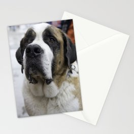 Beethoven Stationery Cards