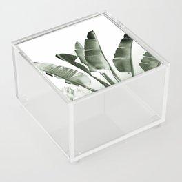 Traveler palm Acrylic Box