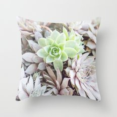 Sea of Succulents Throw Pillow