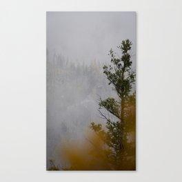 Myra Canyon Late Fall Canvas Print