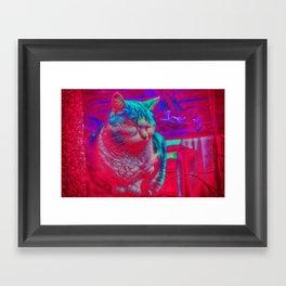 Zen Kitty Framed Art Print