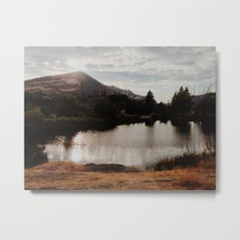 The Dalles Metal Print