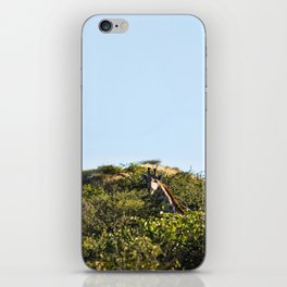 Giraffe. iPhone Skin