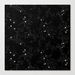 Domio Constellation Canvas Print
