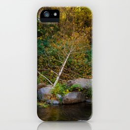Tree Branch by the Creek iPhone Case