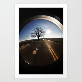 big burr oak Art Print