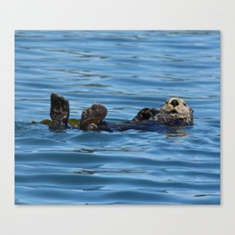 Sea Otter Photography Print Canvas Print