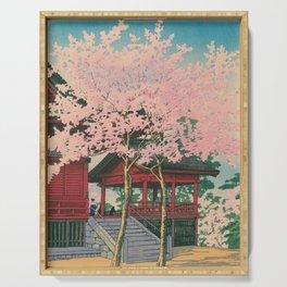 Kawase Yusui made Tokyo Twenty Views Ueno Shimizudo Serving Tray