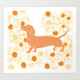 Frolicking sausage dog Art Print