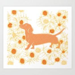 Frolicking sausage dog Art Print