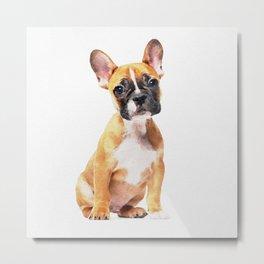 French Bulldog Puppy Watercolor Metal Print
