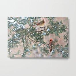 Winter Pair: Cardinals Metal Print