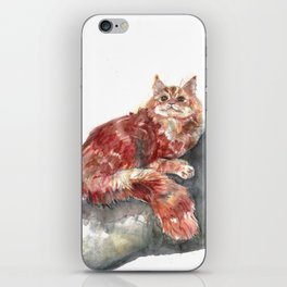 Cat on a tree iPhone Skin