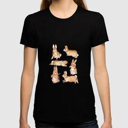 Bunnies in Tales of Peter Rabbit  characters Beatrix Potter T-shirt