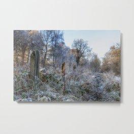 Frosty Morn Metal Print