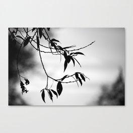 Some Twilight Canvas Print