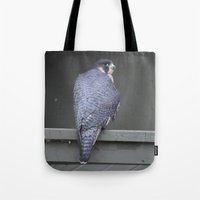 millenium falcon Tote Bags featuring Falcon by Sarah Shanely Photography