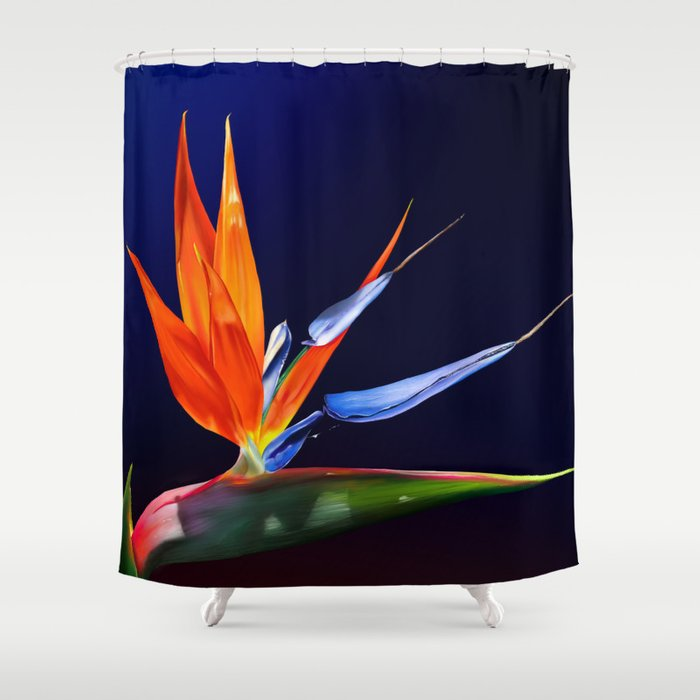 Birds Of Paradise Shower Curtain By Donnabrowning