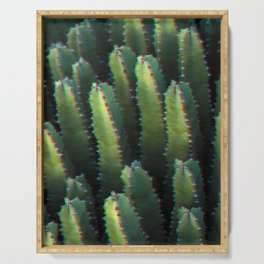 Cactus family Serving Tray