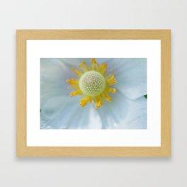 Windflower II Framed Art Print