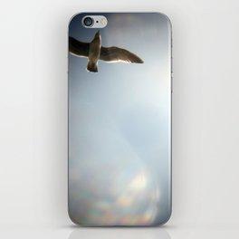 sky/gull iPhone Skin
