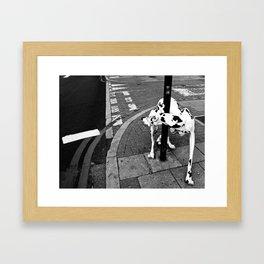 The Dog Framed Art Print