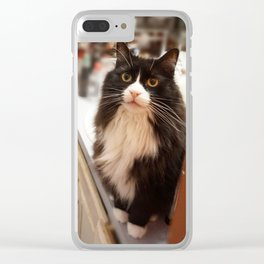 Bear Smiling Clear iPhone Case